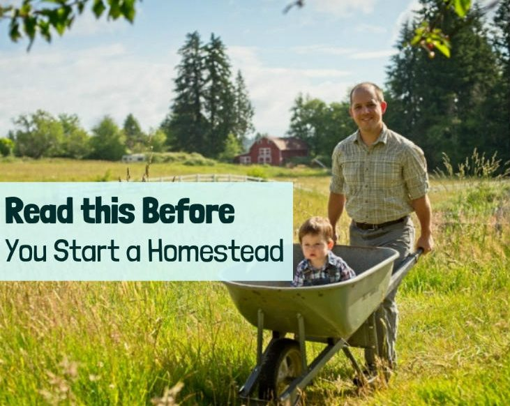 Read This Before You Start a Homestead