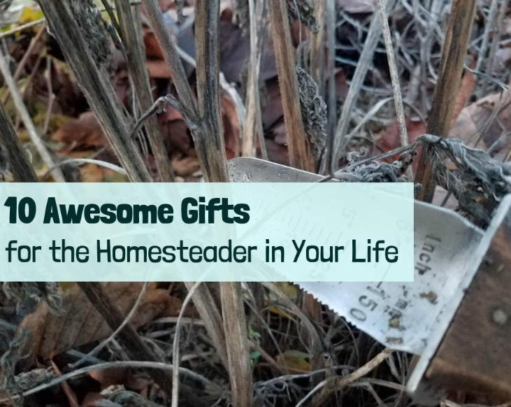 10 Awesome Gifts for the Homesteader in Your Life