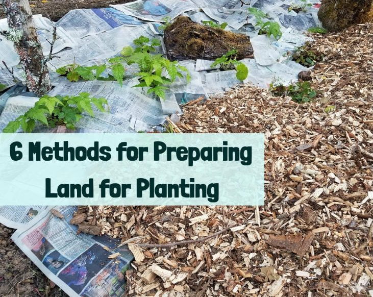 6 Methods for Preparing Land for Planting