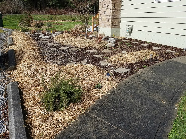 Preparing land for planting with mulch alone