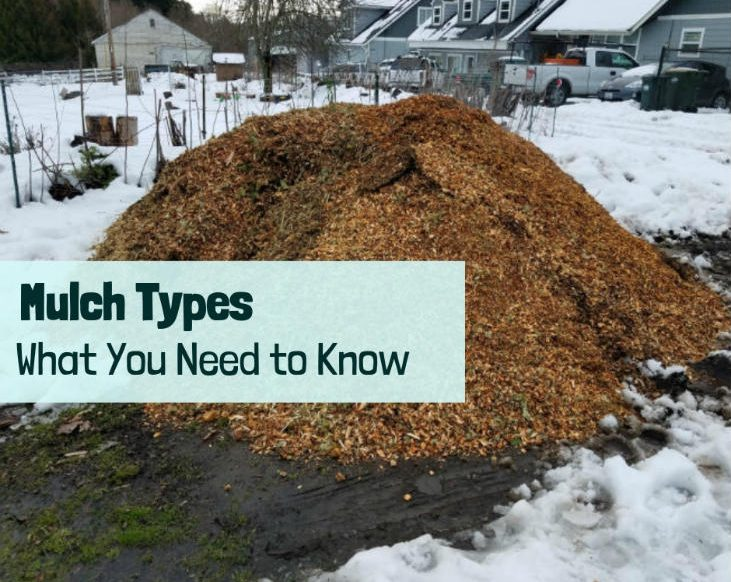 Types of Mulch - What You Need to Know