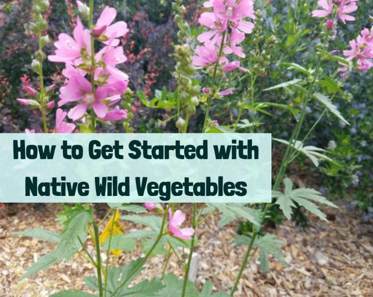 Native wild vegetables
