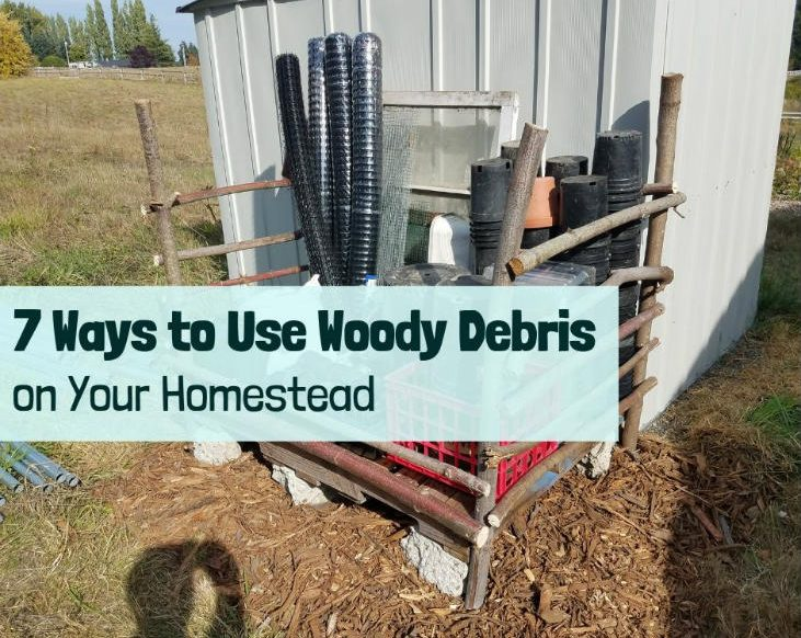 Use woody debris to build structures