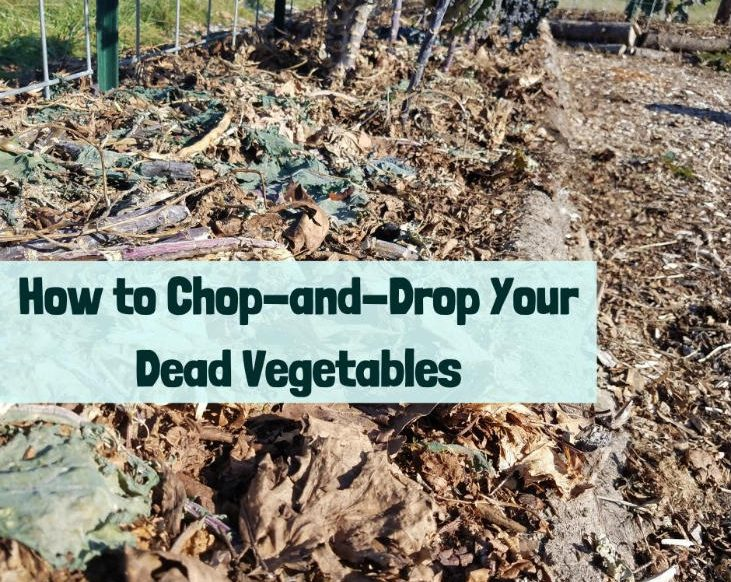 Chop-and-drop your dead vegetables
