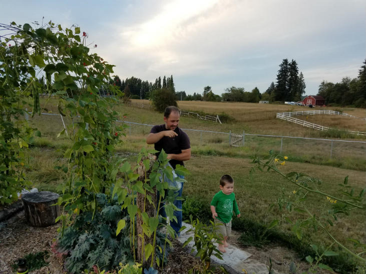 Rewilding your homestead is good for the world