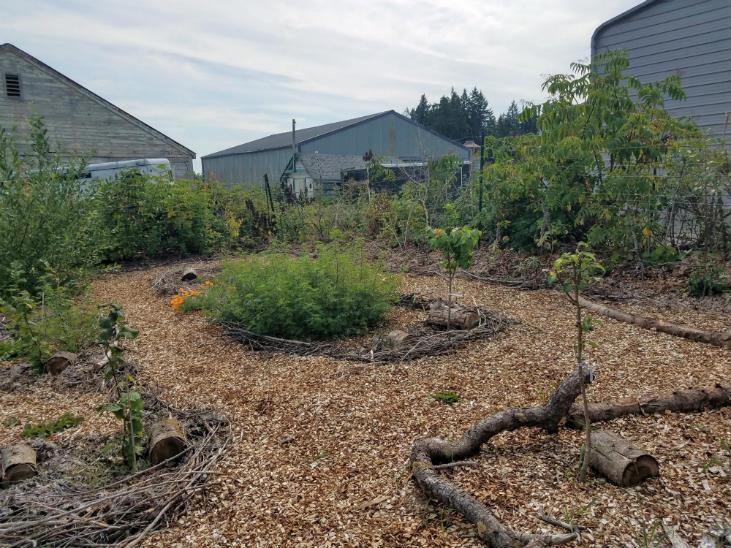 Start building nature trails