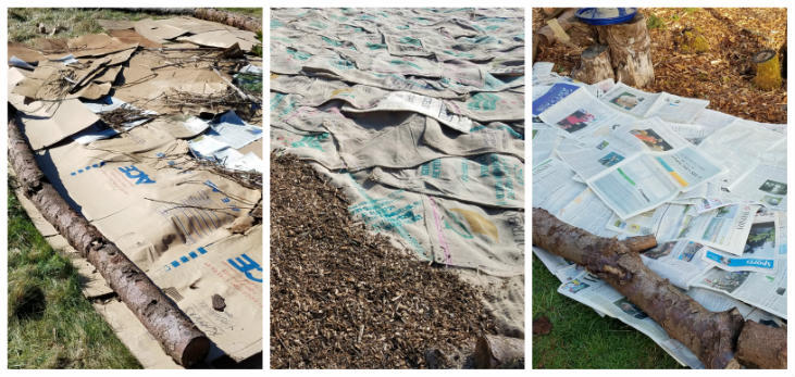 Sheet mulching is a great way to prepare land for planting