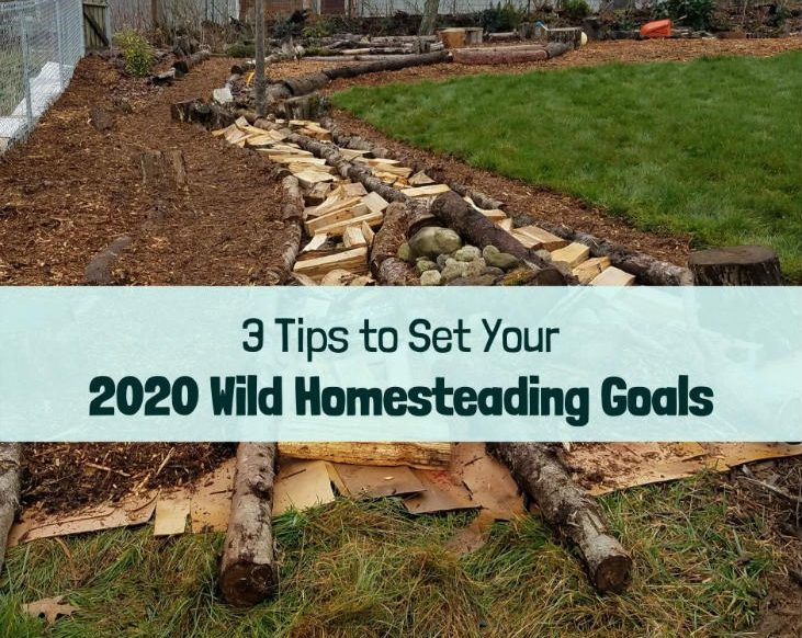 Set your 2020 wild homesteading goals!