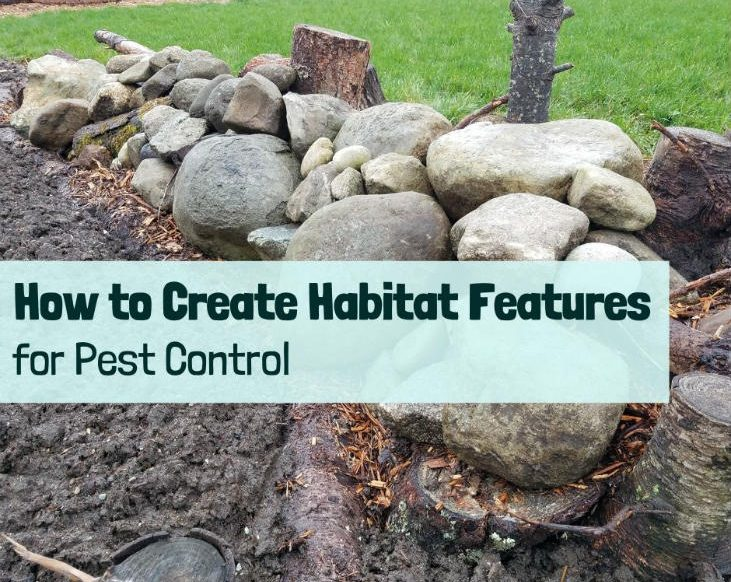 Create a habitat feature!