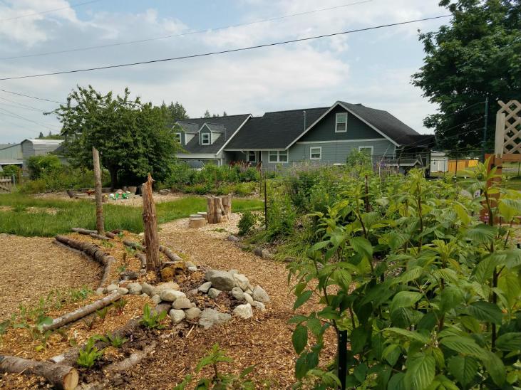 Kitchen garden with habitat features