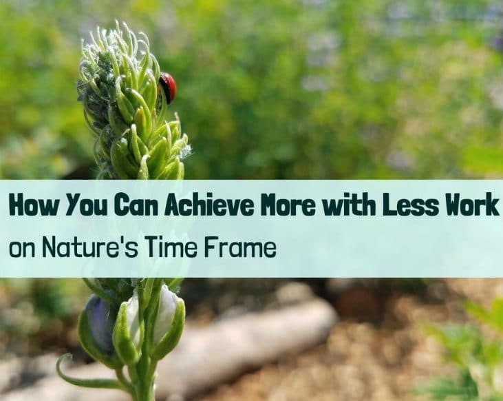 Nature's time frame