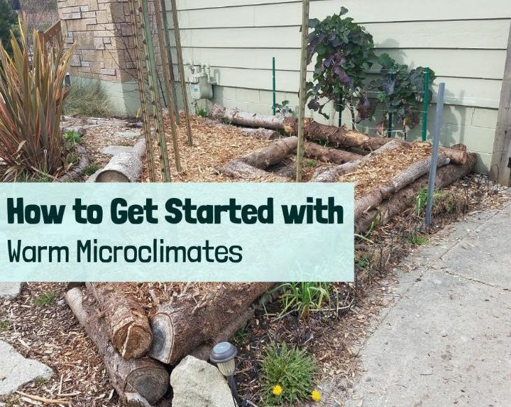 Get started with warm microclimates