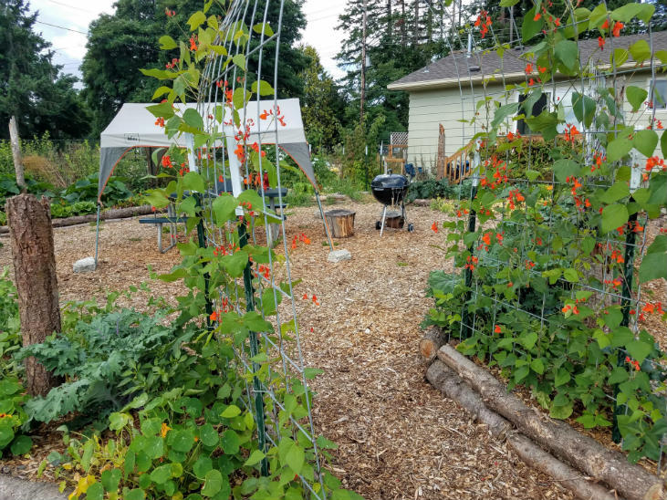 A kitchen garden can be a beautiful place!