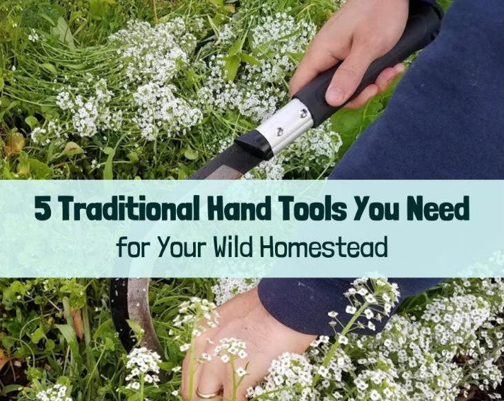 5 traditional hand tools