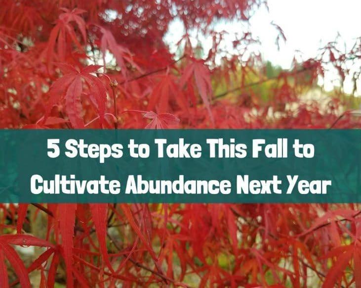 Cultivate abundance next year